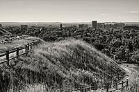 Boise Skyline from Camel's Back Park