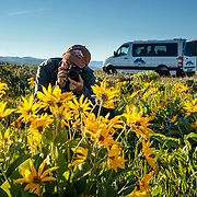 A Teton Teton Science Schools wildlife tour stops to explore the balsamroot flowers along the Antelope Flats Road in Grand Teton National Park, Wyoming.(Paul Maddex)
