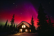 Alaska. Cantwell. aurora Borealis lights up the interior night sky with a cabin in winter.