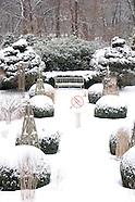 Winter Garden and Botanicals