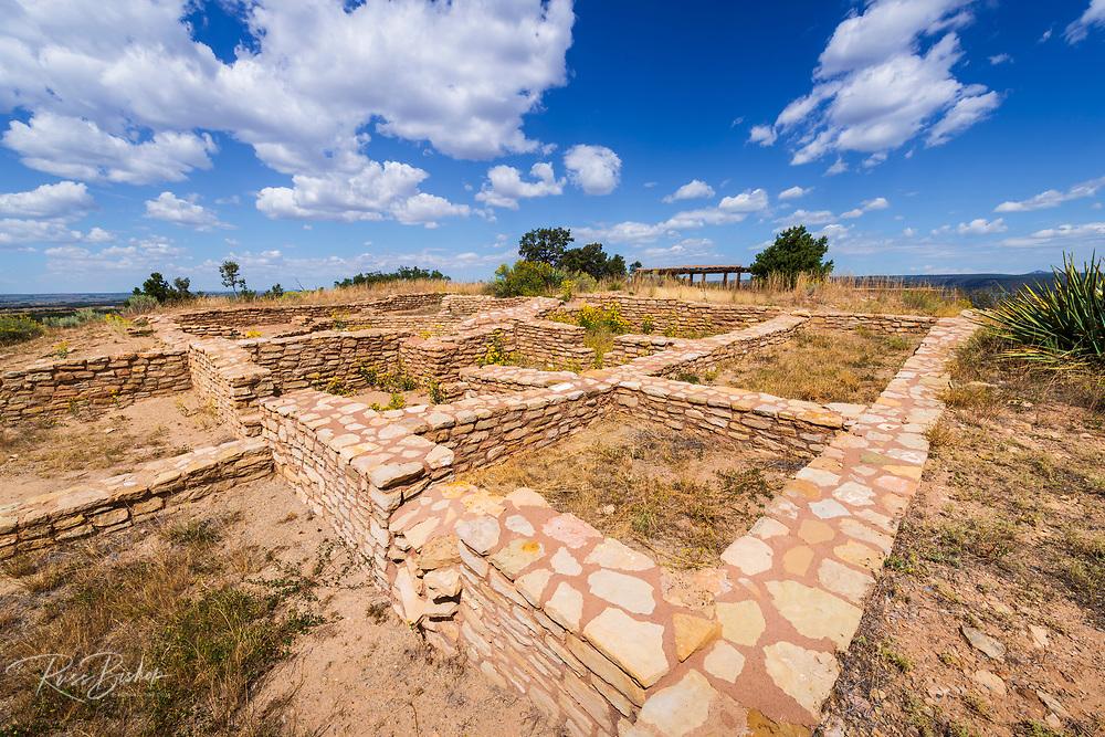 Anasazi ruins at Canyons of the Ancients National Monument, Colorado USA