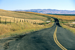 Northern California Roadway