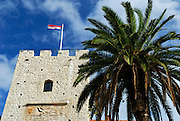 Revelin Tower with Croatian flag flying, at the entrance into the old town of Korcula, and Palm tree. Korcula old town, island of Korcula, Croatia.