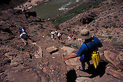 Hikers descending from Deer Creek on way down to Colorado River below, Grand Canyon National Park, Arizona..Subject photograph(s) are copyright Edward McCain. All rights are reserved except those specifically granted by Edward McCain in writing prior to publication...McCain Photography.211 S 4th Avenue.Tucson, AZ 85701-2103.(520) 623-1998.mobile: (520) 990-0999.fax: (520) 623-1190.http://www.mccainphoto.com.edward@mccainphoto.com.