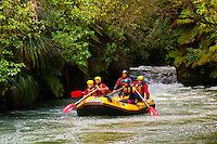 Rafting the Kaituna River (Kaitiaki Adventures) near Rotorua, north island, New Zealand