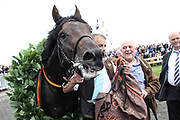 Pferdesport: 148. Deutsches Galopp Derby, Hamburg, 02.07.2014<br /> Derbysieger: Windstoß<br /> © Torsten Helmke
