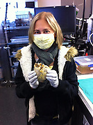 Incredible moment transplant recipient held her dead heart in her hands after successful operation<br /> <br /> A transplant patient has been pictured holding her own heart in her hands after she survived cancer and organ failure.<br /> Even with the medical mask hiding most of her face, 'Penny's' wide-eyed grin is clear as her new heart beats in her chest and she holds the old one for one last time following the successful procedure.<br /> '[Penny] is holding her own heart. She has survived cancer and crippling heart failure and never lost hope.'<br /> <br /> According to Kelsey's profile, doctors allowed Penny to take a photograph with her dead heart before it was cremated.<br /> Wrapping both hands around it, she holds the heart up to the camera as if it were a trophy. <br /> Now a picture of health, she has this photograph as a keepsake of her ordeal and a reminder of how lucky she is to have received the new heart.<br /> Around 4,000 people every year in the U.S. need a heart transplant but only around 2,300 are able to get them.<br /> Worldwide, about 3,500 heart transplants are performed annually.<br /> A patient is usually kept in the hospital for up to two weeks after the procedure and the amount of recovery time depends on the health of the patient.<br /> ©Kelsey Snuffaluffagus/exclusivepix