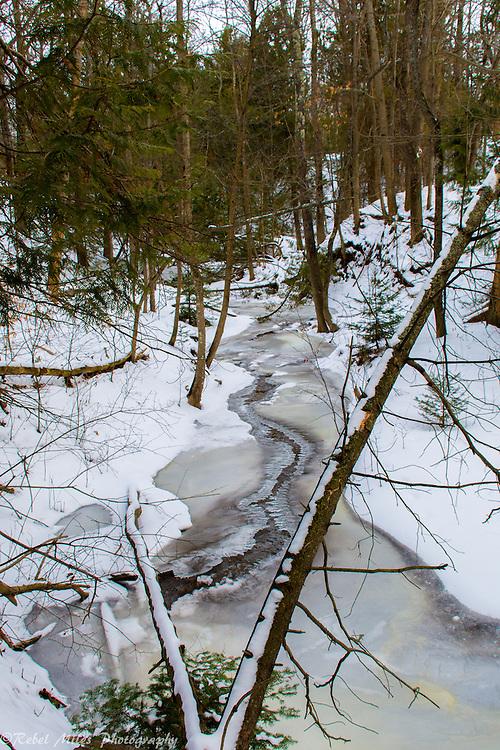 Antrim Creek Nature Area