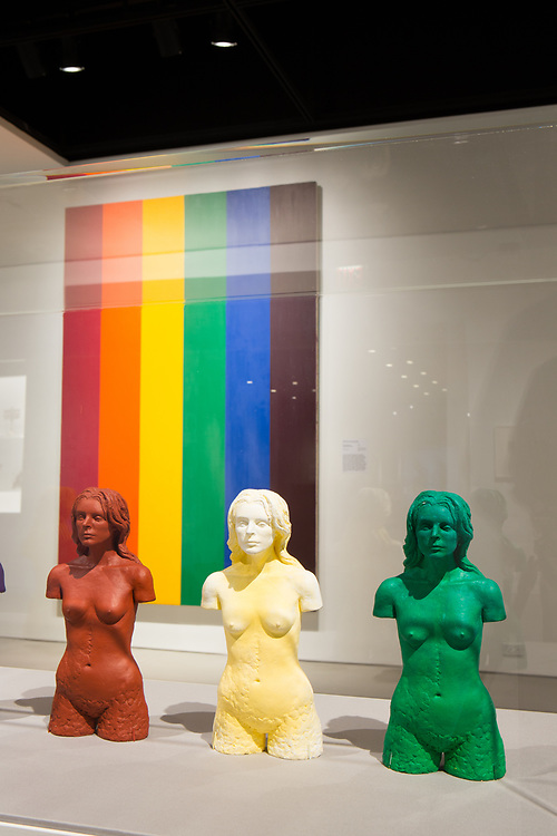 FIgures in the foreground are Venus Pareve by Hannah Wilke, 1982-85; in the background is Double Portrait (Gay Flag) by Ross Bleckner, 1993.