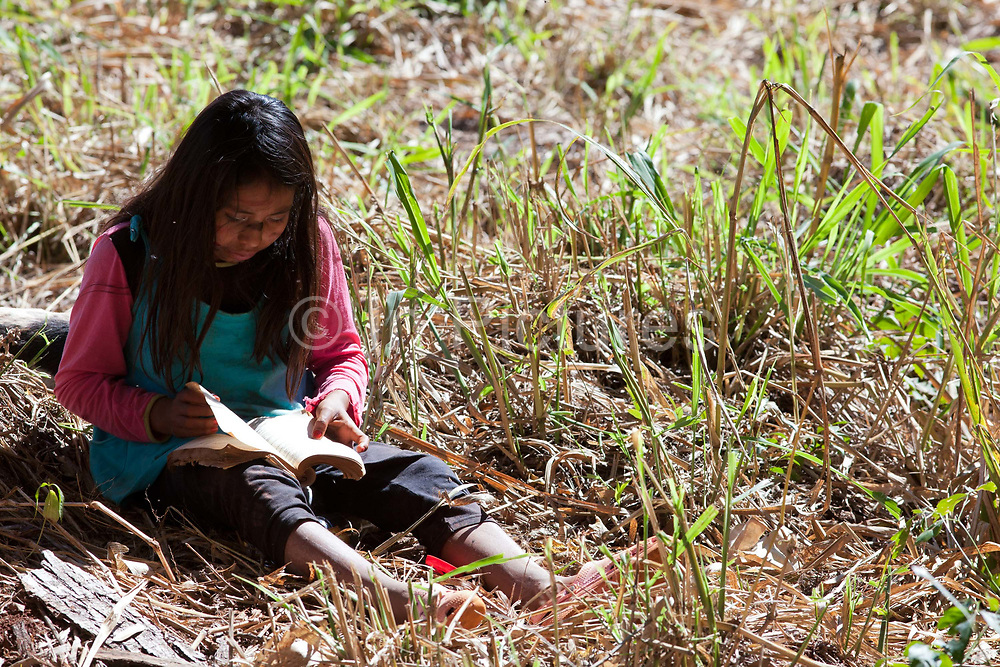 Young Guarani girl sitting on the ground outdoors reading. The Guarani are one of the most populous indigenous populations in Brazil, but with the least amount of land. They mostly live in the State of Mato Grosso do Sul and Mato Grosso. Their tradtional way of life and ancestral land is increasingly at risk from large scale agribusiness and agriculture. There have been recorded cases and allegations of violence between owners of large farms and the Guarani communities in this region.