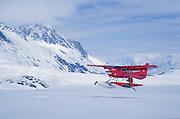 Alaska. Chugach Mountains. Upper Colony Glacier. Red Cessna 206 picks up a skier.