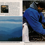 Photo essay in Forbes Magazine on migrant mushroom pickers in the Pacific Northwest