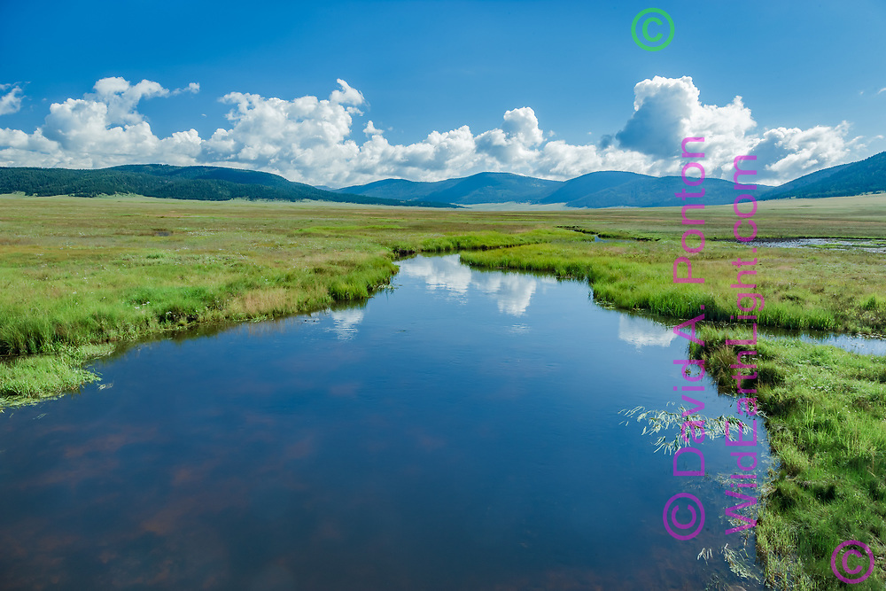 The East Fork of the Jemez River originates in the Valle Grande, largest grassland valley in the Valles Caldera National Preserve, © David A. Ponton