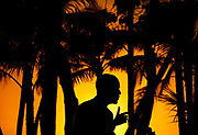 The sun sets as U.S. President Barack Obama speaks at his news conference at the conclusion of the APEC Summit in Honolulu, Hawaii November 13, 2011.   REUTERS/Jim Young