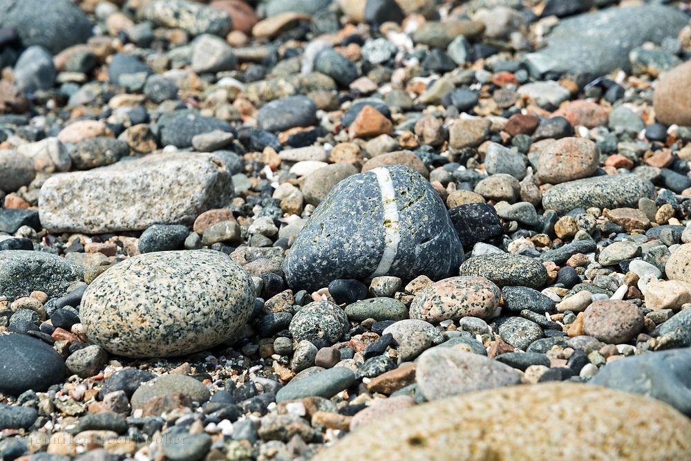 Granite beach stone with a stripe of quartz, Eastern Head, Isle au Haut, Maine.
