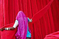 Inde, Rajasthan, Usine de Sari, Sundara, 54 ans. Les tissus sechent en plein air. Ramassage des tissus secs par des femmes et des enfants avant le repassage. Les tissus pendent sur des barres de bambou. Les rouleaux de tissus mesurent environ 800 m de long. . // India, Rajasthan, Sari Factory, Sundara, 54 old. Textile are dried in the open air. Collecting of dry textile  are folded by women and children. The textiles are hung to dry on bamboo rods. The long bands of textiles are about 800 metre in length.