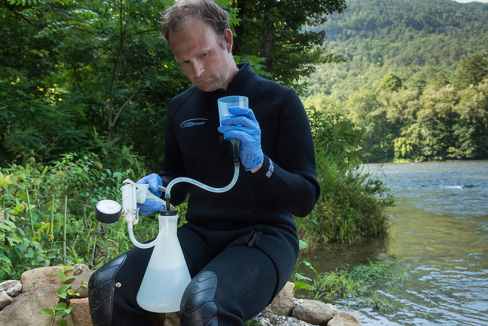 Researcher Stephen Spear tests water for Hellbender DNA to determine presence or absence of species<br /> Eastern Hellbender (Cryptobranchus alleganiensis <br /> Hiwassee River, Cherokee National Forest<br /> Tennessee<br /> USA