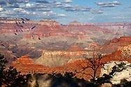 Vista desde Yavapai Point, Grand Canyon National Park, Arizona (Estados Unidos)