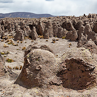 View on the petrified forest of Imata.