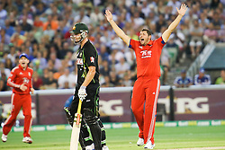 © Licensed to London News Pictures. 26/12/2013. Tim Bresnan appeals for an LBW during the 2nd T20 international between Australia Vs England at the Melbourne Cricket Ground, Victoria, Australia. Photo credit : Asanka Brendon Ratnayake/LNP