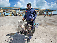 Bahamian Police Reserve Officer Darling Dorrington evacuates two dogs, Alex and Emma, at Marsh Harbour Dock in Abaco on Friday, September 6, 2019