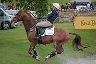BILLY BANDIT ridden by Flora Harris taking part in the Equitrek CCI*** cross country on day three of the Bramham International Horse Trials 2017 at Bramham Park, Bramham, United Kingdom on 11 June 2017. Photo by Mark P Doherty.