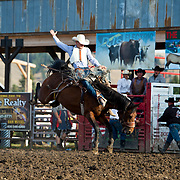 Brand Morgan on Red Eye Rodeo Back Draft at the Darby Broncs N Bulls event Sept 7th 2019.  Photo by Josh Homer/Burning Ember Photography.  Photo credit must be given on all uses.