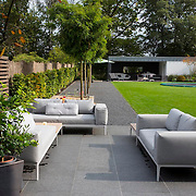 Modern Garden 1018