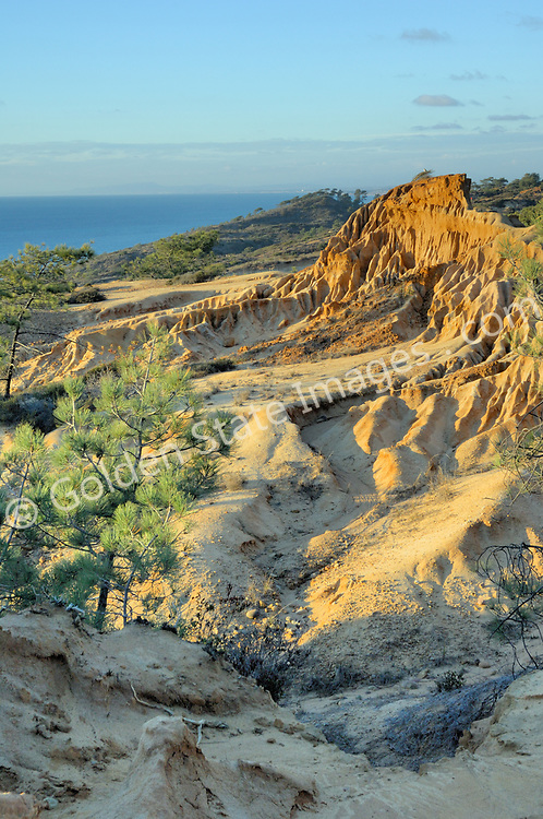 Eroded sandstone formations in the more remote southern end of Torrey Pines Reserve.