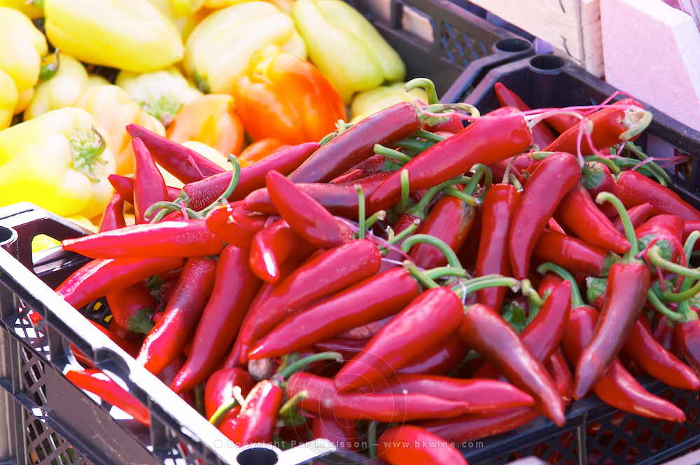 Red pepperoni chilli peppers and yellow bell peppers. In the fruit and vegetable market in the harbour. Luka Gruz harbour. Dubrovnik, new city. Dalmatian Coast, Croatia, Europe.