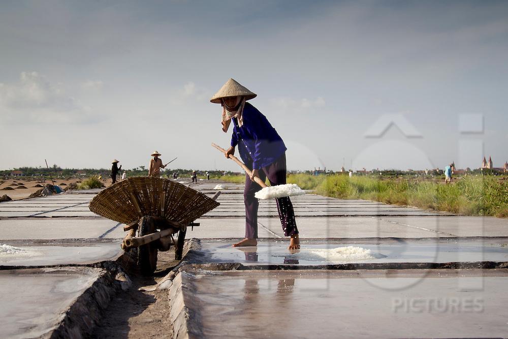 A woman's working on salt marsh, Nam Dinh province, Vietnam, Asia.