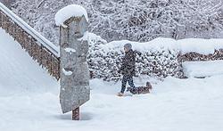 THEMENBILD - eine Frau mit ihrem Hund spaziert durch den frisch gefallenen Schnee, aufgenommen am 13. Jaenner 2017, Kaprun, Österreich // A woman with her dog strolling through the freshly fallen snow in Kaprun, Austria on 2017/01/13. EXPA Pictures © 2017, PhotoCredit: EXPA/ JFK