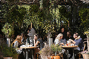 Autumn al fresco Dining in New York City by Rodney Bedsole, a food photographer based in Nashville and New York City.