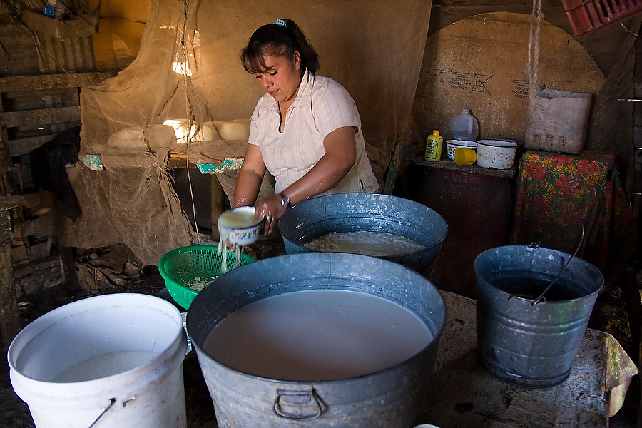 A woman passes young cheese curds, prepared that morning from fresh goat's milk, through a strainer to remove excess liquid in San Francisco de la Sierra, Baja California Sur, Mexico on January 31, 2009. Making goat cheese is the primary activity and source of income for the ranches in the area.