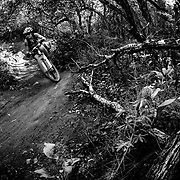 Heather Goodrich Rides the scrub oak trails of Prince Creek in Carbondal, Colorado.