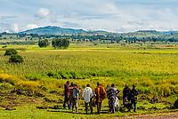 Village elders talking, Jiga, Amhara region, Ethiopia.