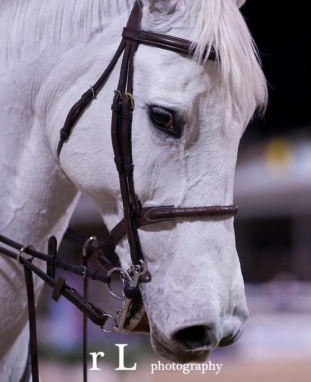 World Equestrian Festival Equine Couture & Tuff Rider Grand Prix