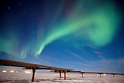 Alaska . Aurora Borealis above the Alyeska Pipeline on the North Slope .