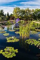 Dale Chihuly Exhibition (blown glass), Denver Botanic Gardens, Denver, Colorado USA.