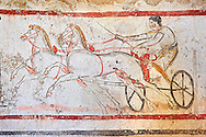 Lucanian fresco tomb painting of a man on a chariot. Paestrum, Andriuolo. Tomb n. 53 ( 350-330 BC ) .<br /> <br /> If you prefer to buy from our ALAMY PHOTO LIBRARY  Collection visit : https://www.alamy.com/portfolio/paul-williams-funkystock - Scroll down and type - Paestum Fresco - into LOWER search box. {TIP - Refine search by adding a background colour as well}.<br /> <br /> Visit our ANCIENT GREEKS PHOTO COLLECTIONS for more photos to download or buy as wall art prints https://funkystock.photoshelter.com/gallery-collection/Ancient-Greeks-Art-Artefacts-Antiquities-Historic-Sites/C00004CnMmq_Xllw