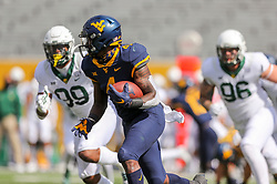Oct 3, 2020; Morgantown, West Virginia, USA; West Virginia Mountaineers running back Leddie Brown (4) runs the ball during the first quarter against the Baylor Bears at Mountaineer Field at Milan Puskar Stadium. Mandatory Credit: Ben Queen-USA TODAY Sports