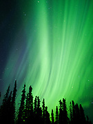 Green northern lights during geomagnetic storm on September 11, 2018, toward dawn, solar wind from a coronal hole during solar minimum, sky above Glacier View, Alaska.