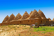 """Pictures of the beehive adobe buildings of Harran, south west Anatolia, Turkey.  Harran was a major ancient city in Upper Mesopotamia whose site is near the modern village of Altınbaşak, Turkey, 24 miles (44 kilometers) southeast of Şanlıurfa. The location is in a district of Şanlıurfa Province that is also named """"Harran"""". Harran is famous for its traditional 'beehive' adobe houses, constructed entirely without wood. The design of these makes them cool inside. 36 .<br /> <br /> If you prefer to buy from our ALAMY PHOTO LIBRARY  Collection visit : https://www.alamy.com/portfolio/paul-williams-funkystock/harran.html<br /> <br /> Visit our TURKEY PHOTO COLLECTIONS for more photos to download or buy as wall art prints https://funkystock.photoshelter.com/gallery-collection/3f-Pictures-of-Turkey-Turkey-Photos-Images-Fotos/C0000U.hJWkZxAbg ."""