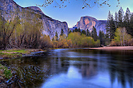 Half Dome before sunset in April. The leaves on the trees along the  Merced River are just coming out.