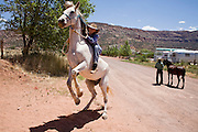 """June 16, 2008 -- COLORADO CITY, AZ: A member of the Jessop family rides her horse on a street in Colorado City, AZ. The Jessops are a polygamous family and members of the FLDS. Colorado City and neighboring town of Hildale, UT, are home to the Fundamentalist Church of Jesus Christ of Latter Day Saints (FLDS) which split from the mainstream Church of Jesus Christ of Latter Day Saints (Mormons) after the Mormons banned plural marriage (polygamy) in 1890 so that Utah could gain statehood into the United States. The FLDS Prophet (leader), Warren Jeffs, has been convicted in Utah of """"rape as an accomplice"""" for arranging the marriage of teenage girl to her cousin and is currently on trial for similar, those less serious, charges in Arizona. After Texas child protection authorities raided the Yearning for Zion Ranch, (the FLDS compound in Eldorado, TX) many members of the FLDS community in Colorado City/Hildale fear either Arizona or Utah authorities could raid their homes in the same way. Older members of the community still remember the Short Creek Raid of 1953 when Arizona authorities using National Guard troops, raided the community, arresting the men and placing women and children in """"protective"""" custody. After two years in foster care, the women and children returned to their homes. After the raid, the FLDS Church eliminated any connection to the """"Short Creek raid"""" by renaming their town Colorado City in Arizona and Hildale in Utah.   Photo by Jack Kurtz"""
