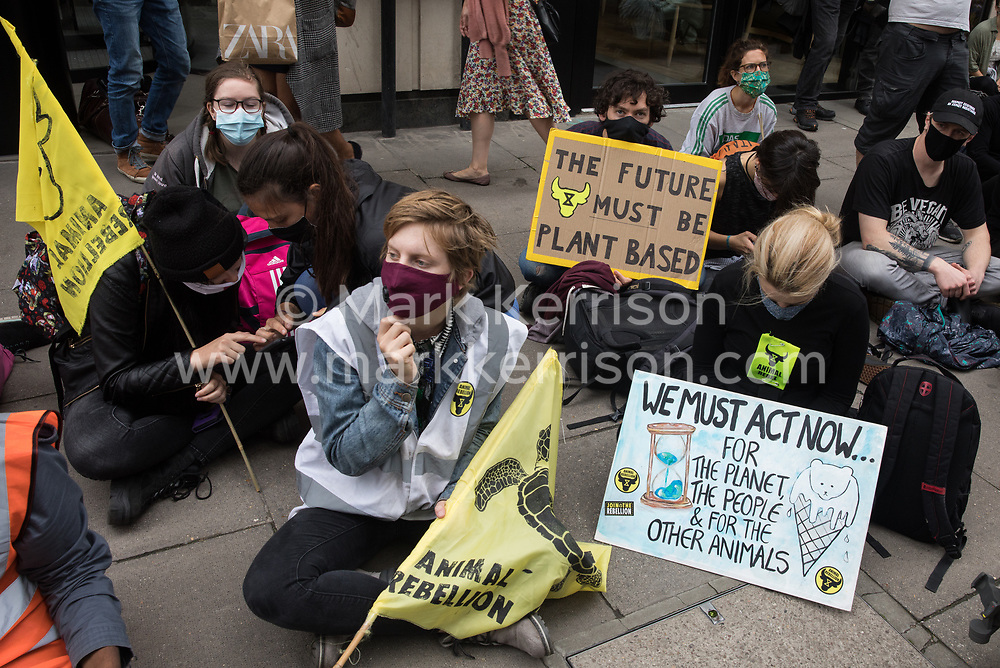 London, UK. 3rd September, 2020. Animal rights activists from Animal Rebellion show solidarity with fellow activists who had glued themselves to the top of and inside a truck in order to blockade the Department of Health and Social Care. Animal Rebellion activists are protesting in solidarity with victims of the global food system and to demand that the UK transitions to a sustainable plant-based food system.