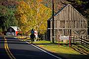 Fall image of the Vermont countryside in Sharon, Vermont, American Northeast by Randy Wells