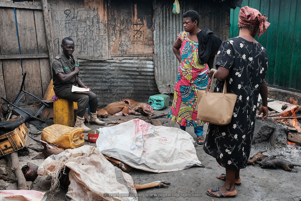 A Forestry Commission inspector chatting with market women while surrounded by illegal deliveries of bushbuck, duiker and wild pig at Atwemonom, the main bushmeat market in Kumasi, Ghana on 7 September 2016. A hunting ban was in effect, with grasscutters (greater cane rats) being the only legal quarry, but no action was taken and these deliveries were not recorded in his official logbook. One was noted on a separate scrap of paper together with an estimated value; for the others, false entries of grasscutters were logged.<br /> <br /> Ghana's bushmeat trade is estimated to be worth £105 million a year.  Given a lack of current empirical data, it is hard to know how many wild animals are being killed to satisfy this demand, but between hunting and habitat loss it is clear that wildlife populations are declining precipitously. One estimate, now dated, posits that Ghana's wildlife biomass has declined by three-quarters since the 1970s.