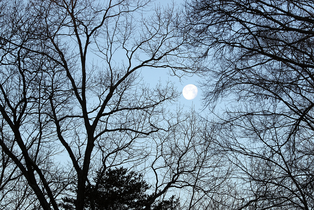 The moon over Charlottesville, Va.  Photo/Andrew Shurtleff Photography, LLC
