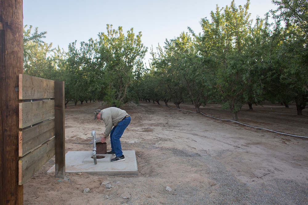 Robert Weimer is farmer in Merced County near Atwater, CA.  He primarily grows almonds, sweetpotatoes and peaches.  Bob, as he is generally known, has made significant investments in water efficiency over the years, and applies scientific rigor throughout his operation.   The sole source for above-ground water in his area is Lake McClure, which is perilously low. Historically,the region has primarily relied on groundwater.  Now that is more the case then ever.  Weimer has drilled two new wells recently, one of which he still is wating on a pump (pictured).